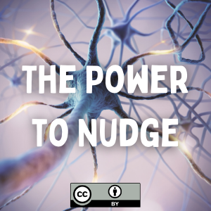 The Power to Nudge